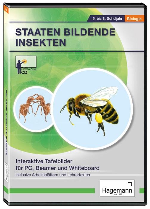 Interaktive Tafelbilder Staaten bildende Insekten, Schullizenz