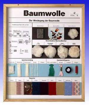Technologie Schaukasten Fasern: Baumwolle