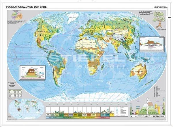 Vegetationszonen der Erde, Wandkarte