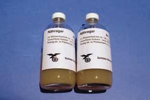 Ergänzungsbedarf zur Bakteriologie: Weiterzucht auf Nähragar, 2 x 125g