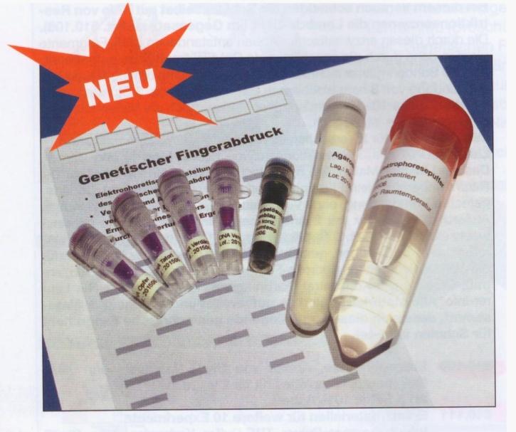 Experimentierkit Genetischer Fingerabdruck (DNA-Fingerprint)