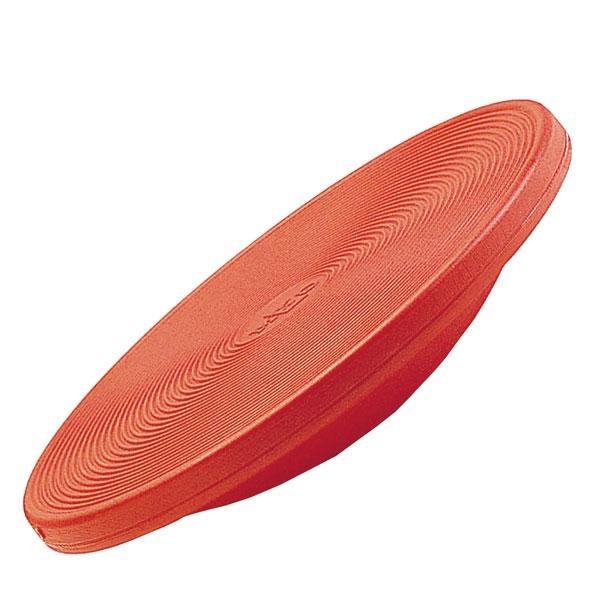 Gym-Top Therapie-Kreisel