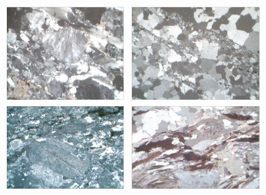 Gesteinsdünnschliffe Serie IV, 29 Dauerpräparate