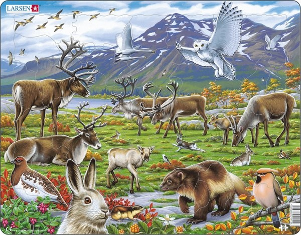 Puzzle - Tiere in Nordeuropa, Format 36,5x28,5 cm, Teile 50
