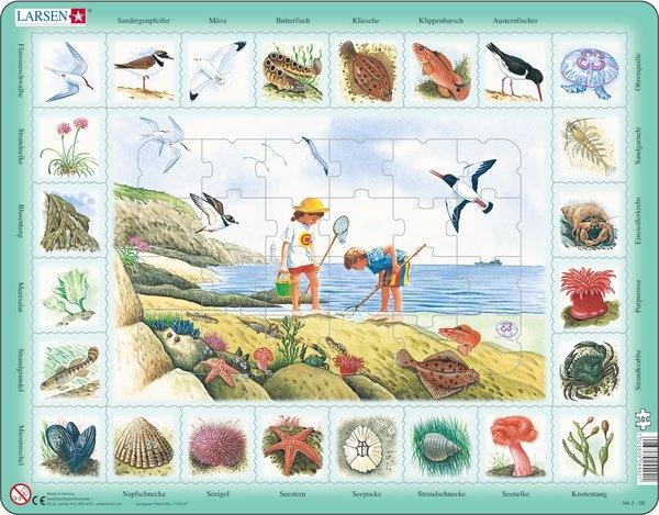 Puzzle - An der Küste, Format 36,5x28,5 cm, Teile 48