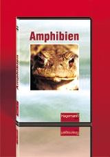 DVD-Video: Amphibien