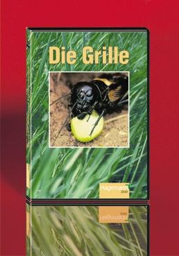 DVD-Video: Die Grille