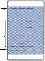 Schlüter-Kit: Elektrophorese-Verfahren, Elektrophorese von Farbstoffen