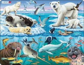 Puzzle - Tiere der Arktis, Format 36,5x28,5 cm, Teile 75