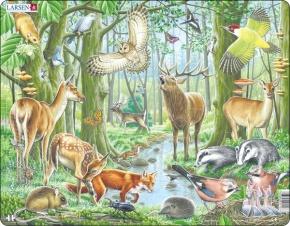 Puzzle - Europäischer Wald, Format 36,5x28,5 cm, Teile 40
